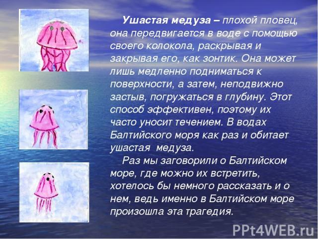 Ушастая медуза – плохой пловец, она передвигается в воде с помощью своего колокола, раскрывая и закрывая его, как зонтик. Она может лишь медленно подниматься к поверхности, а затем, неподвижно застыв, погружаться в глубину. Этот способ эффективен, п…