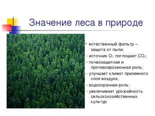 Значение леса в природе - естественный фильтр – защита от пыли; - источник О2; п