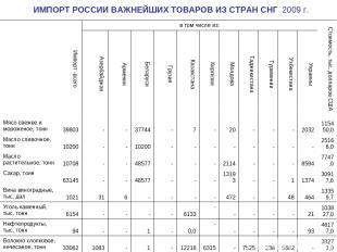 ИМПОРТ РОССИИ ВАЖНЕЙШИХ ТОВАРОВ ИЗ СТРАН СНГ 2009 г.  Импорт -всего в том числ
