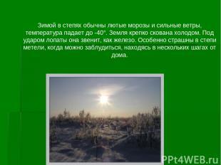 Зимой в степях обычны лютые морозы и сильные ветры, температура падает до -40°.