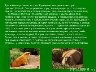 Для жизни в условиях открытой равнины животные имеют ряд приспособлений. Они уст