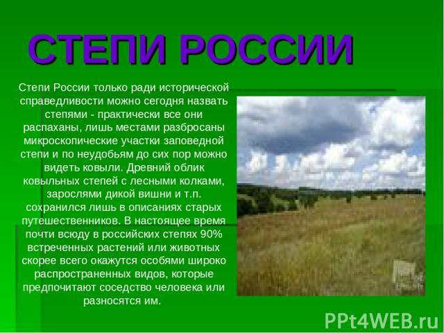 Степи России только ради исторической справедливости можно сегодня назвать степями - практически все они распаханы, лишь местами разбросаны микроскопические участки заповедной степи и по неудобьям до сих пор можно видеть ковыли. Древний облик ковыль…