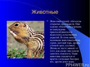 Животные Животные степей- обитатели открытых пространств. Они хорошо обеспечены