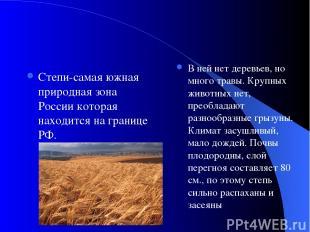 Степи-самая южная природная зона России которая находится на границе РФ. В ней н
