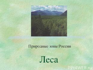 Леса Природные зоны России