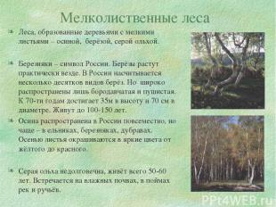 Мелколиственные леса Леса, образованные деревьями с мелкими листьями – осиной, б