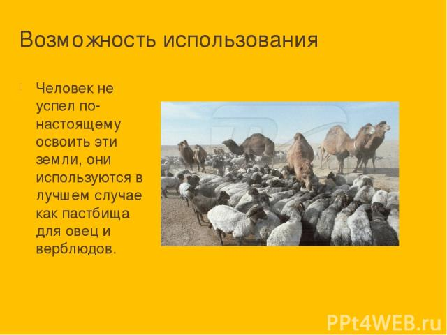 Возможность использования Человек не успел по-настоящему освоить эти земли, они используются в лучшем случае как пастбища для овец и верблюдов.