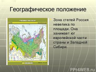 Географическое положение Зона степей Россия невелика по площади. Она занимает юг