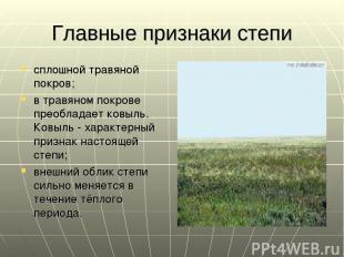 Главные признаки степи сплошной травяной покров; в травяном покрове преобладает