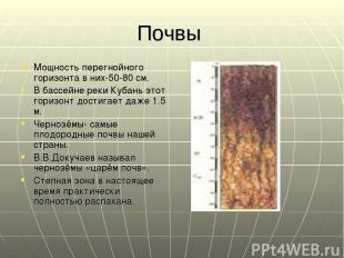 Почвы Мощность перегнойного горизонта в них-50-80 см. В бассейне реки Кубань это