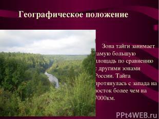 Зона тайги занимает самую большую площадь по сравнению с другими зонами России.