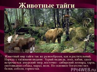 Животный мир тайги так же разнообразен, как и растительный. Наряду с таёжными ви