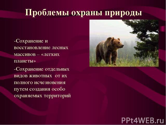 -Сохранение и восстановление лесных массивов – «легких планеты» -Сохранение отдельных видов животных от их полного исчезновения путем создания особо охраняемых территорий Проблемы охраны природы