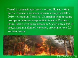 Самый страшный враг леса – огонь. Пожар – бич лесов. Реальная площадь лесных пож