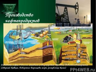 Производство нефтепродуктов Добывают нефть в России: Западная Сибирь(Среднее При