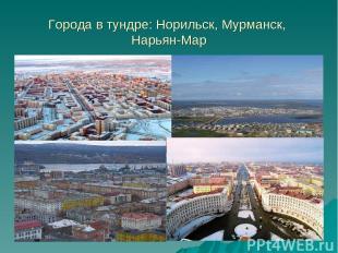 Города в тундре: Норильск, Мурманск, Нарьян-Мар