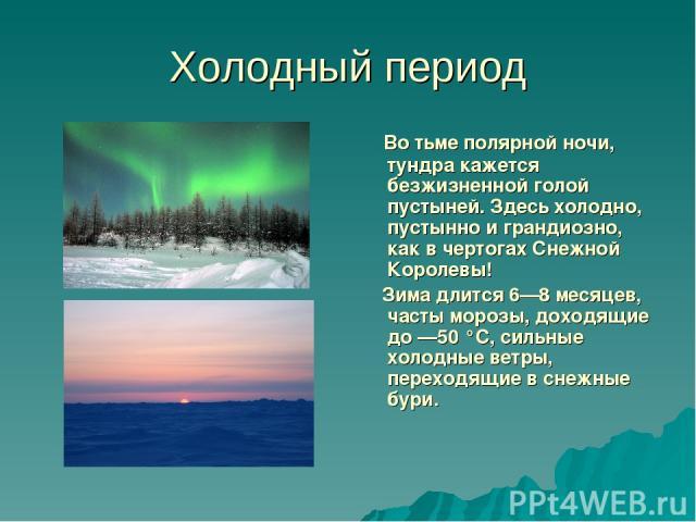 Холодный период Во тьме полярной ночи, тундра кажется безжизненной голой пустыней. Здесь холодно, пустынно и грандиозно, как в чертогах Снежной Королевы! Зима длится 6—8 месяцев, часты морозы, доходящие до —50 °С, сильные холодные ветры, переходящие…
