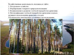 Хозяйственная деятельность человека в тайге 1. Натуральное хозяйство. 2. Формиро