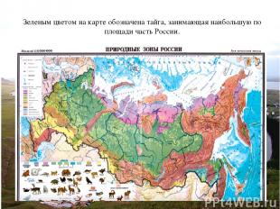 Зеленым цветом на карте обозначена тайга, занимающая наибольшую по площади часть