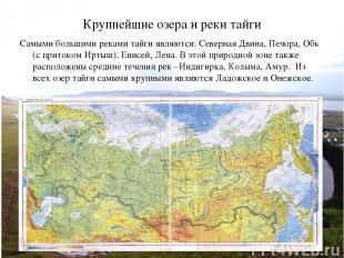 Крупнейшие озера и реки тайги Самыми большими реками тайги являются: Северная Дв