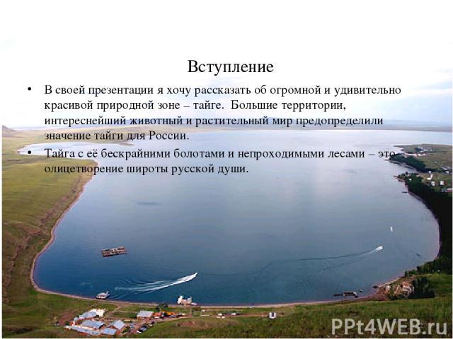 Вступление В своей презентации я хочу рассказать об огромной и удивительно красивой природной зоне – тайге. Большие территории, интереснейший животный и растительный мир предопределили значение тайги для России. Тайга с её бескрайними болотами и неп…