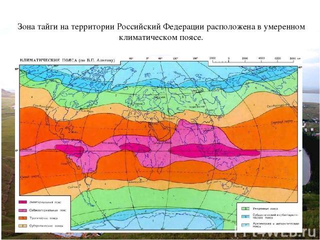 Зона тайги на территории Российский Федерации расположена в умеренном климатическом поясе.