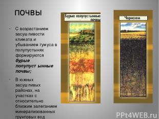 почвы С возрастанием засушливости климата и убыванием гумуса в полупустынях форм
