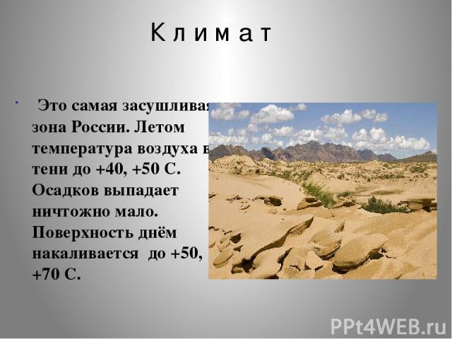 К л и м а т Это самая засушливая зона России. Летом температура воздуха в тени до +40, +50 C. Осадков выпадает ничтожно мало. Поверхность днём накаливается до +50, +70 С.