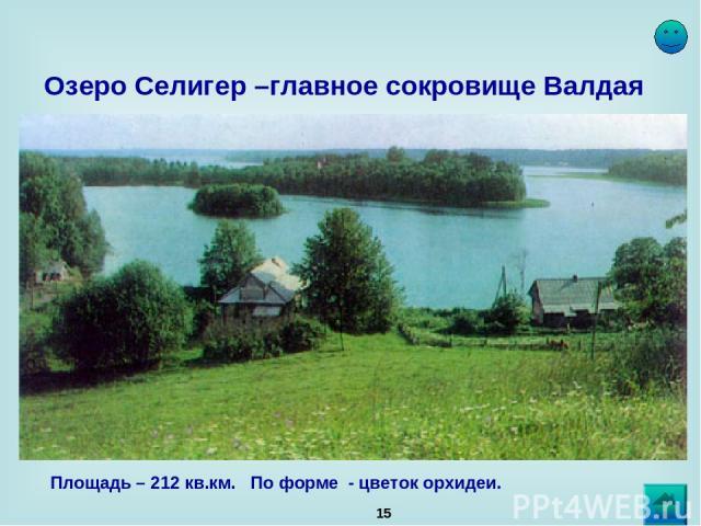 * Озеро Селигер –главное сокровище Валдая Площадь – 212 кв.км. По форме - цветок орхидеи.