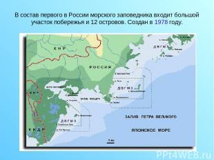 В состав первого в России морского заповедника входит большой участок побережья
