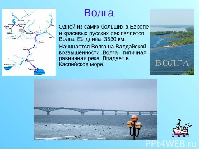 Волга Одной из самих больших в Европе и красивых русских рек является Волга. Её длина 3530км. Начинается Волга на Валдайской возвышенности. Волга - типичная равнинная река. Впадает в Каспийское море.