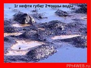 1г нефти губит 2 тонны воды