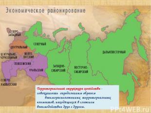 Территориальная структура хозяйства - совокупность определенным образом взаимора