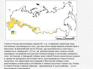 Степи в России расположены южнее 55` с.ш. и образуют широтную зону, постепенно с