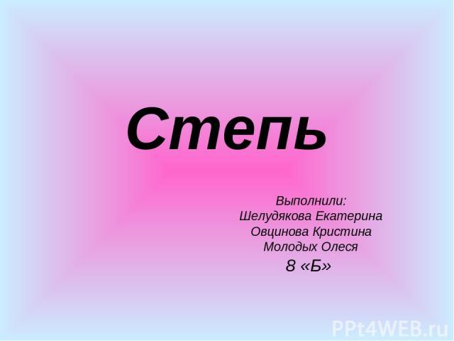 Степь Выполнили: Шелудякова Екатерина Овцинова Кристина Молодых Олеся 8 «Б»
