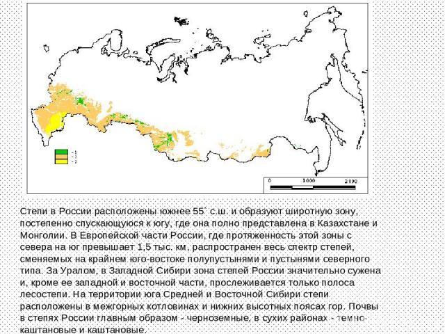 Степи в России расположены южнее 55` с.ш. и образуют широтную зону, постепенно спускающуюся к югу, где она полно представлена в Казахстане и Монголии. В Европейской части России, где протяженность этой зоны с севера на юг превышает 1,5 тыс. км, расп…