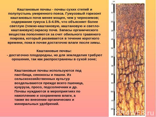 Каштановые почвы - почвы сухих степей и полупустынь умеренного пояса. Гумусовый горизонт каштановых почв менее мощен, чем у черноземов; содержание гумуса 1.5-4.5%, что объясняет более светлую (темно-каштановую, каштановую и светло-каштановую) окраск…
