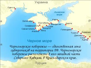Черноморское побережье — единственная зона субтропиков на территории РФ. Черномо