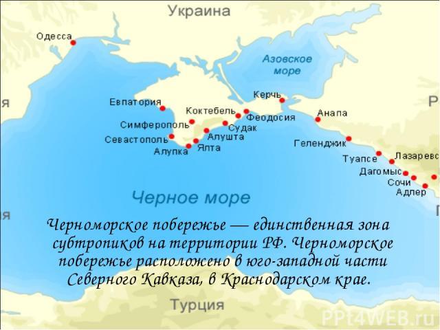 Черноморское побережье — единственная зона субтропиков на территории РФ. Черноморское побережье расположено в юго-западной части Северного Кавказа, в Краснодарском крае.