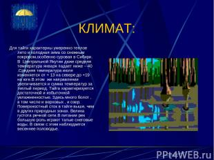 КЛИМАТ: Для тайги характерны умеренно теплое лето и холодная зима со снежным пок