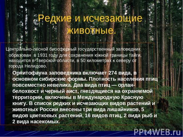 Редкие и исчезающие животные. Центрально-лесной биосферный государственный заповедник образован в 1931 году для сохранения южной границы тайги, находится в Тверской области, в 50 километрах к северу от города Нелидово. Орнитофауна заповедника включа…