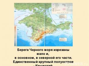 Берега Черного моря изрезаны мало и, в основном, в северной его части. Единствен