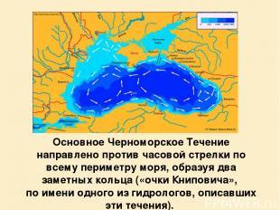 Основное Черноморское Течение направлено против часовой стрелки по всему перимет