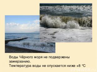 Воды Чёрного моря не подвержены замерзанию. Температура воды не опускается ниже