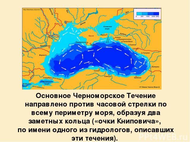 Основное Черноморское Течение направлено против часовой стрелки по всему периметру моря, образуя два заметных кольца («очки Книповича», по имени одного из гидрологов, описавших эти течения).