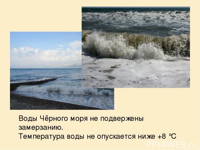 Воды Чёрного моря не подвержены замерзанию. Температура воды не опускается ниже +8°C