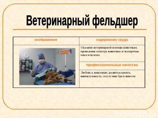 изображение содержание труда Оказание ветеринарной помощи животным; проведение о