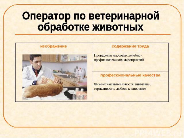изображение содержание труда Проведение массовых лечебно-профилактических мероприятий профессиональные качества Физическая выносливость; внимание, терпеливость; любовь к животным