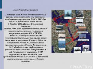 Международная реакция 7 октября 2008. Совет безопасности ООН принял резолюцию 18