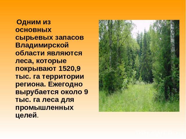 Одним из основных сырьевых запасов Владимирской области являются леса, которые покрывают 1520,9 тыс. га территории региона. Ежегодно вырубается около 9 тыс. га леса для промышленных целей.
